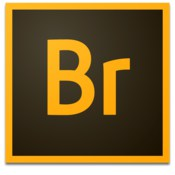 Adobe Bridge 2020 v10.0.1