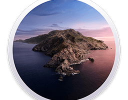 macOS Catalina 10.15.2 (19C57) Update Combo Only