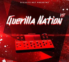 Digikitz Guerilla Nation v1.0.0